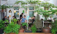 versteckte gastgaerten in wien Vienna Austria, Places, Holiday, Nature, Outdoor, Vacation, Viajes, Outdoors, Vacations