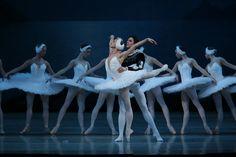 ロシア・サンクトペテルスブルグの名門バレエ団、マリインスキー・バレエ「白鳥の湖」