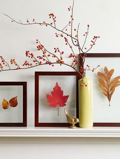 Frame colored leaves