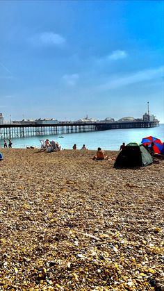 Are you heading to Brighton for a whistle stop 24 hours? Then read my blog on what to do in a short space of time. Seaside Resort, Seaside Towns, Canterbury Tales, Brighton And Hove, Pebble Beach, Great Places, Night Life, Places To Visit, Alice