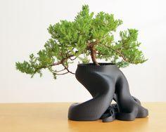 Bonsai Planter by createdbygordon  http://thingiverse.com/thing:430957