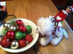 Elf on a shelf riding on plush dog
