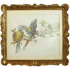 Antique watercolor painting , signed , century from chateau on Ruby Lane Antique Art, Vintage Art, Vintage Antiques, Vintage World Maps, Ruby Lane, Painted Signs, Bird Art, Vivid Colors, 19th Century