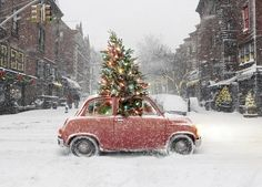 Christmas tree grows out of old vintage car in the middle of the street.