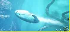 AWAKENING FOR ALL: Was the Biblical LEVIATHAN an Amphibious UFO?