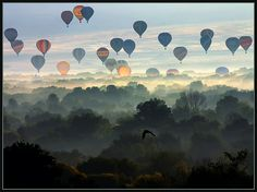Bill Jemison - This was a misty morning during the 2005 Albuquerque International Balloon Fiesta and I took the shot from a hill in Rio Rancho, NM where I live as the balloons drifted northward along the Rio Grande River in the bosque (river forest).