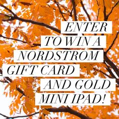 nordstrom gift card and apple gold mini ipad giveaway