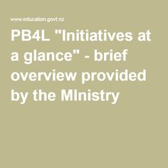 """""""Initiatives at a glance"""" - brief overview provided by the MInistry At A Glance, Special Needs, Professional Development, Looking Back, Ministry, Behavior, Encouragement, Student, Education"""