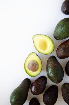 Avocado Spotlight... picking,cutting AND growing!