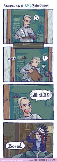 A Normal Day In The Life Of Sherlock And Watson…
