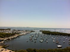 Yacht Harbour - Coconut Grove - Miami
