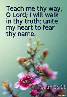 """Teach me thy way, O LORD; I will walk in thy truth: unite my heart to fear thy name."" Psalm 86:11 KJV"