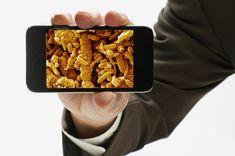 Quando foi a última vez que você limpou seu celular? Você sabia que os celulares carregam 10 vezes mais bactérias do que os assentos de sanitários?