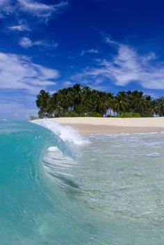Aqua Peel, a perfect wave curling onto the beach in the Mentawai Islands, off Indonesia by Sean Davey.