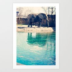 Elephant Art Print by Kate Perry - $17.68