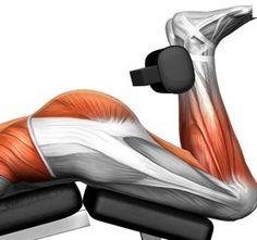 Crushing Legs Workout