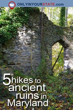Travel Maryland USA Ruins Ancient Ruins Abandoned Places Forgotten Places Hiking Hikes The Outdoors Nature Ruin Hikes Urban Exploration Maryland Day Trips, Visit Maryland, Camping Places, Places To Travel, Places To See, Camping List, Camping Recipes, Vacation Places, Vacation Ideas
