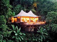Tropical cabin tent