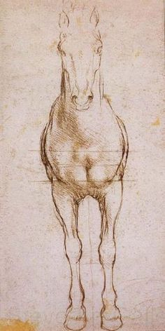 Study of the proportion of horses by Leonardo da vinci Horse Art, Leonardo, Animal Drawings, Leonardo Da Vinci, Art Drawings, Renaissance Art, Illustration Art, Art, Intro To Art