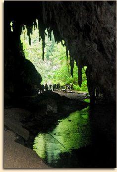 Cueva del Guacharo, Monagas