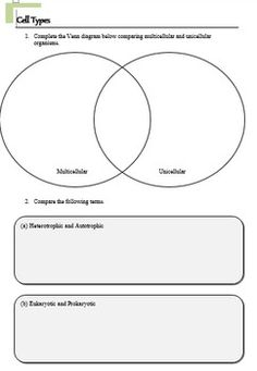 Worksheets Enzyme Activity Worksheet worksheets and activities on pinterest cells worksheet activity pack