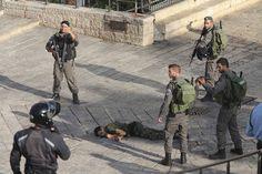اسرائیل بالکل بھی نسل پرست نہیں