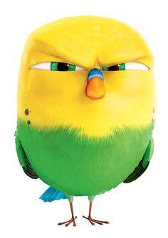 La Nuez: La vida secreta de las mascotas 3d Character, Character Design, Vogel Clipart, Pets Movie, Obelix, Secret Life Of Pets, Bird Artwork, Animation, Bird Illustration