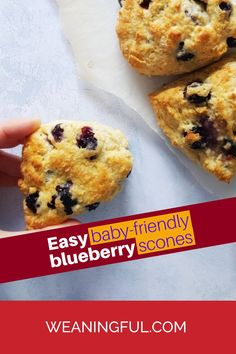 Whether you're doing baby led weaning or going for the traditional weaning method, these easy and quick scones with only 3 basic ingredients and blueberries are great finger food.
