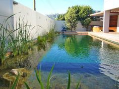 As Natural as a Mountain Lake . The Living Pool offers the same clean and crystal clear conditions as in the mountains. This is achieved with a special filter that removes nutrients from the water, so that the algae are deprived of their sustenance
