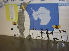 Activity to compare the sizes of different penguins... very visual for children.