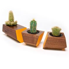Perfect for adding plants to your tabletop. Boxcar Planter- Walnut and Orange | Urbilis