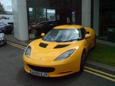 Lotus Solar Yellow