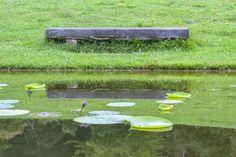 Jardin de la Maladaire - août 2014