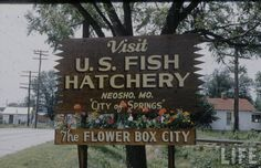 Old Photos: Flowery Face Lift For Neosho, MO