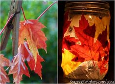 DIY Craft For Fall - Fall Leaf Luminary. Gorgeous candleholder, and really easy to make.