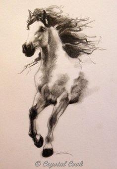running wild horse sketch - Google Search