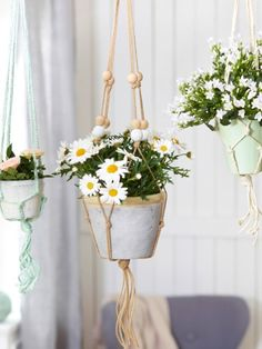 Makramee-Blumentöpfe sind drinnen und draußen ein Hingucker und lassen sich leicht selber machen. Folgen Sie einfach Schritt für Schritt der Anleitung >>>