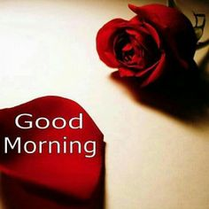 good-morning-wishes-for-lover-