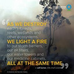 "as we destroy earth""s forests reefs,& wetlands & other ecosystemsWE LIGHT A FIRE to our barriers"