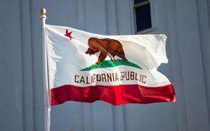 A Closer Look at Prop 64 in California: Part 2   The Marijuana Times