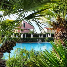 #resort in #loano2village #italy #rivieraligure #swimmingpool #green #tree #beautiful #view #loveit