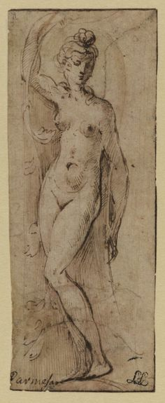 Cat. 3: Female Figure,around 1531-1539 Francesco Maria Mazzola (Parmigianino)(Parma 1503-1540 Casalmaggiore) Pen and brown ink (recto) and red chalk (verso);134x52 mm Samuel Courtauld Trust: Princes Gate Bequest, D.1978.PG.366