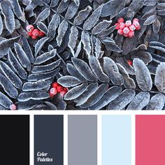 A contrasting combination of bright pink with pale blue and black completed with gray shades. This color scheme can be used in festive and everyday clothes, both male and female