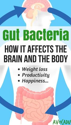 Best workout tip : Workouts to Lose Weight Fast : Why your gut health matters and how to heal your leaky gut to lose weight Lose Weight Naturally, How To Lose Weight Fast, Loose Weight, Body Weight, Clean Program, Gut Brain, Brain Food, Health Heal, Brain Health