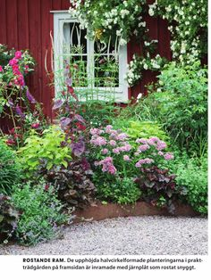 Åhhh sååå fint💗🌳☘️🌸 Outdoor Plants, Garden Plants, Outdoor Gardens, Dream Garden, Home And Garden, Red Houses, House Paint Exterior, Outdoor Projects, Flower Beds