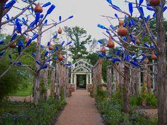 Cobalt bottle trees with gourd bird houses.