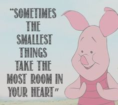 """Sometimes the smallest things, take the most room in your heart"" #Motivation"