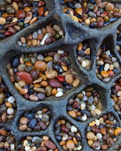 Simple Treasures by Floris van Breugel - Tiny jewel like pebbles collect in the cave-like features of a Tafoni riddled rock along the California coast near Santa Cruz. Land Art, Art Et Nature, Pot Pourri, Fractal, Pebble Beach, Beach Stones, Rock Formations, Rocks And Gems, Patterns In Nature