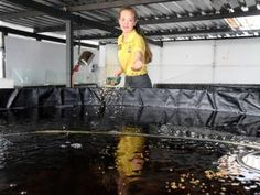 Teen's fish farm is booming... Rikalize Reinecke owns an aquaculture and aquaponics business, called La Pieus Aqua, on a plot in Kameelfontein, north of Pretoria. At the entrance are glass tanks with a new batch of baby tilapia and catfish. Then there are the four big, black plastic tanks or dams which the fish get transferred to at their different growth stages.