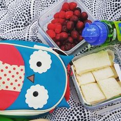Who's ready for a picnic? #SkipHop #owl #zoolunchies #picnic
